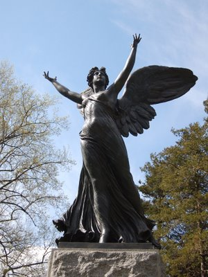 If all goes well, the angels of Green-Wood Cemetery will soon greet a fully-functioning condomium-style Monk Parakeet nest before Spring turns to Summer.