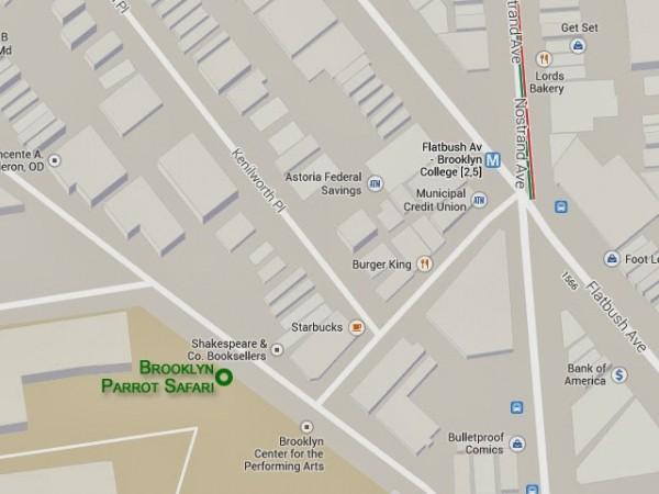 brooklyn-parrot-safari-map-brooklyn-college