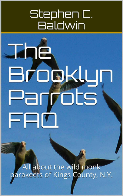 At long last, it's here: The Brooklyn Parrots Ebook